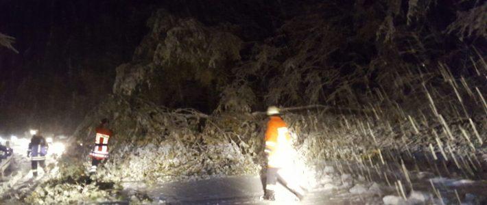 Umgestürzte Bäume und Schnee behindern Berufsverkehr